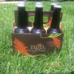 Trader Joes ngb Gluten-Free Beer in the six pack